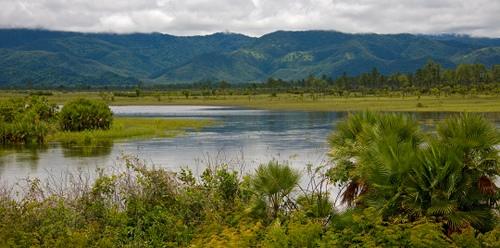 Озеро в Национальном парке Белиза
