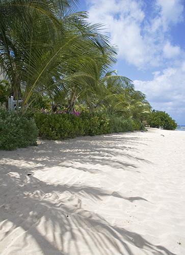 Песчаные пляжи Барбадоса