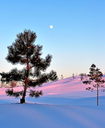 Зимние пейзажи Канады
