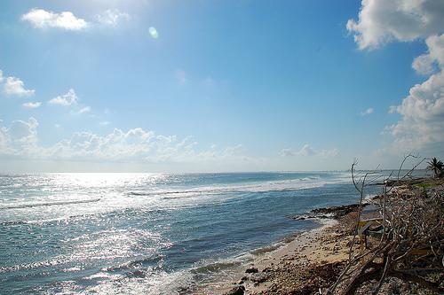 Солнечные воды Каймановых островов