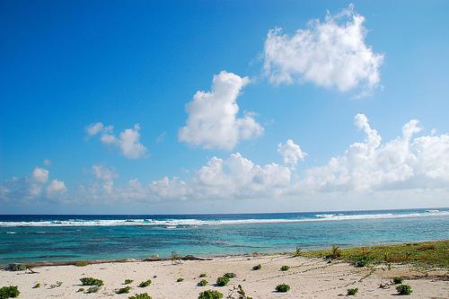 Дикий пляж Каймановых островов