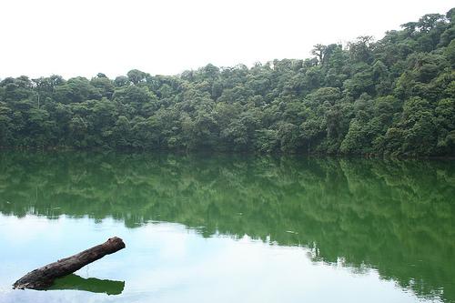 Побережье реки на Коста Рике