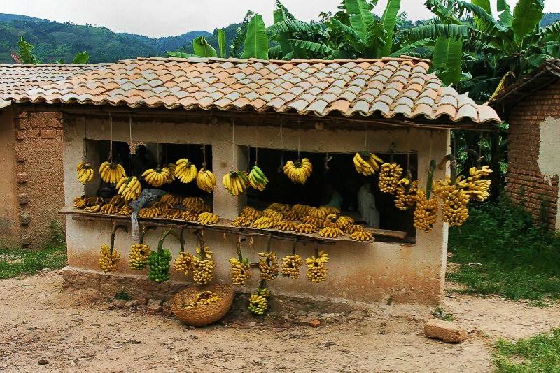 Бурунди. Банановый дом