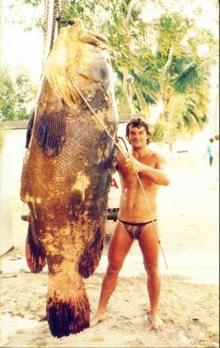 Габон. Огромная рыба