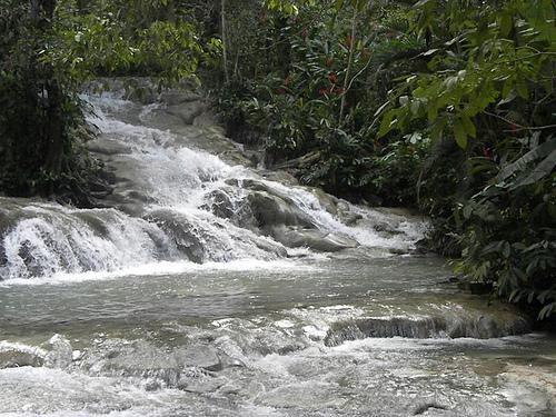 Горная речка на Ямайке