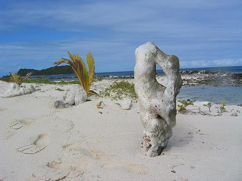 Дикий пляж на Тринидад и Тобаго