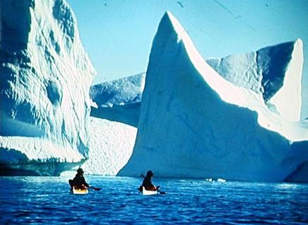Вершины айсбергов в водах Гренландии