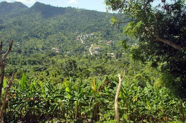 Зеленые массивы Гренады