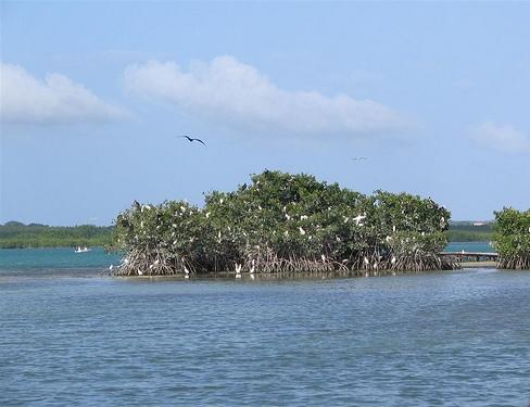 Островок у побережья Гваделупы