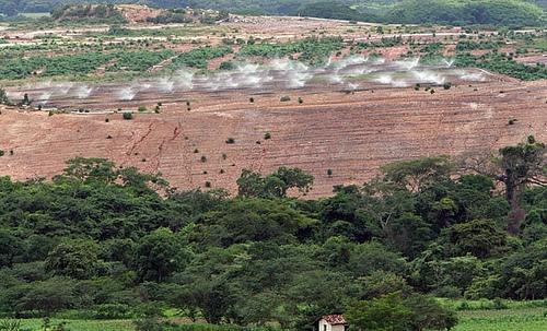 Вид на плантации посевных культут в Гондурасе