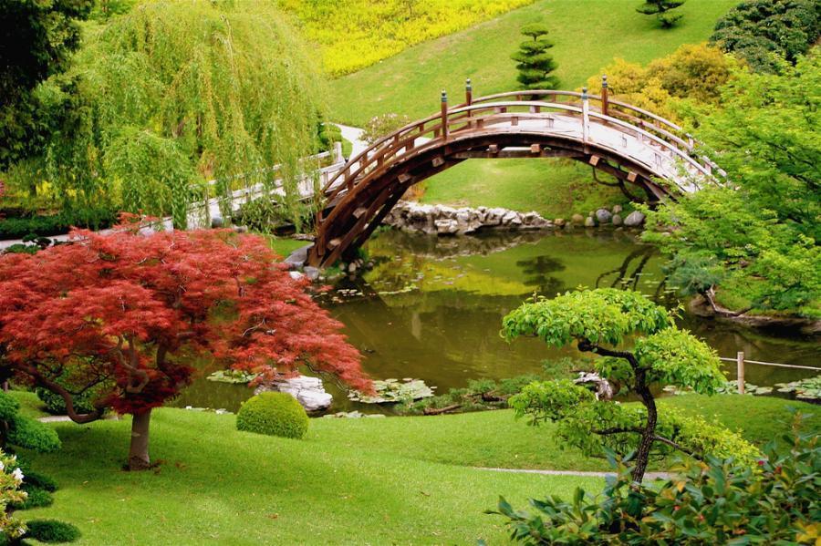 Японский сад в ташкенте