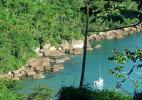 Вид на побережье в Бразилии с стороны леса