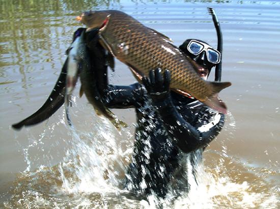 быстрая охота и рыбалка