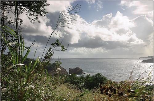 Солнечный вид побережья Мартиники