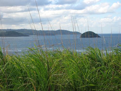 Побережье Мартиники со стороны острова