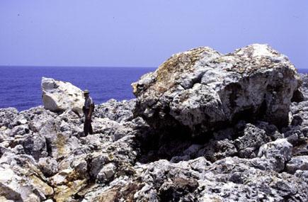 Скалистый берег О-ва Навасса