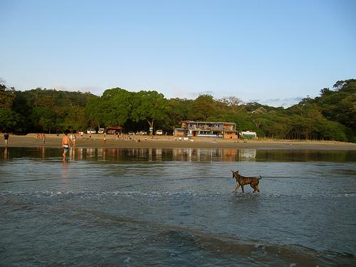 Побережье возле деревни в Никарагуа