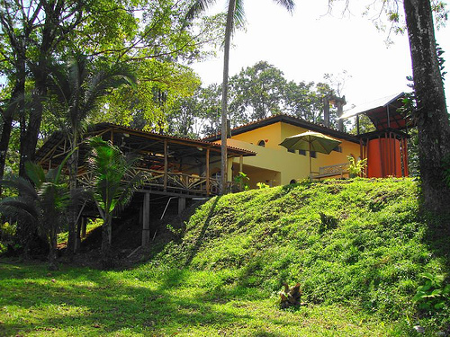 Зеленые массивы Панамы