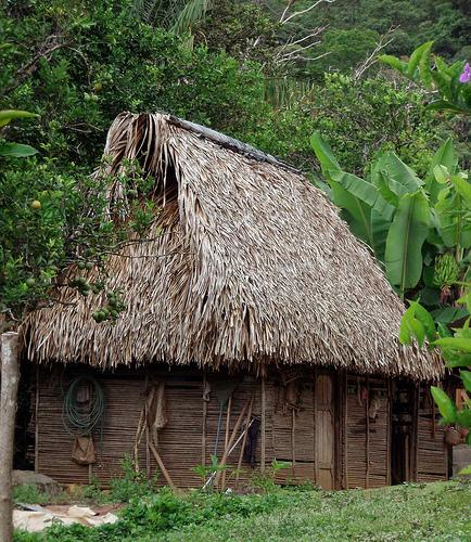 Избушка коренных жителей в Панаме