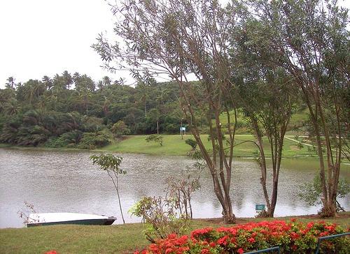 Побережье в парке Сальвадора