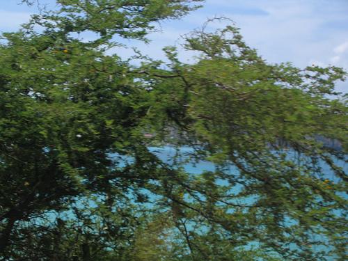 Зеленые берега Сан-Мартена