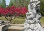Пекинсикй зоопарк