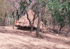 Жилище в Национальном парке Верхнего Нигера, Гвинея