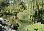 Женевский ботанический сад