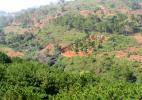 Окрестности Далаба, Гвинея