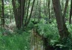 Национальный парк Ходж Кемпен