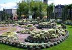 Город Норрчёпинг в Швеции. Композиция из кактусов