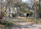 Лагерь в заказнике Мореми, Ботсвана