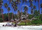 экзотический остров Вануату