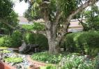 Парк Рисаль в городе Манила на Филиппинах. Памятник