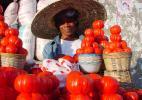 торговка томатами, Гана