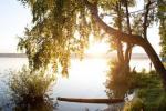 Природа Подмосковья. Бисерово озеро